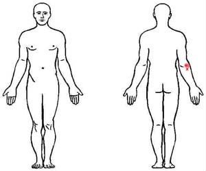 anconeus trigger point